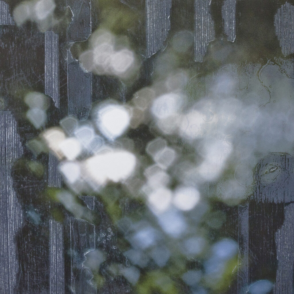 Dark grey background with off focus, white, soft grey and soft green abstract lights featuring