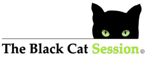 Clare Culture Night – The Black Cat Session, under the sky with the Hazelgrove Community